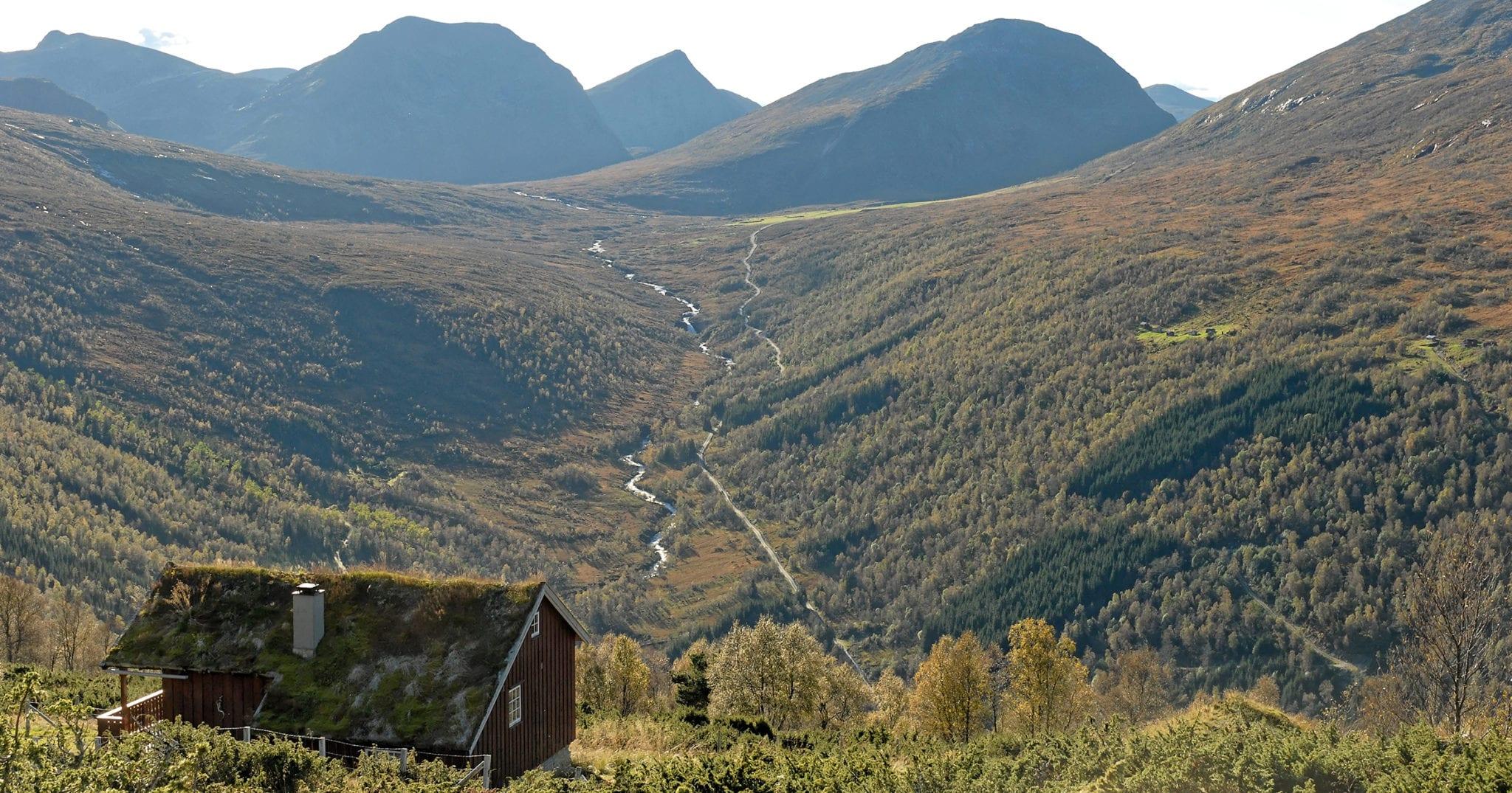 Langedalen